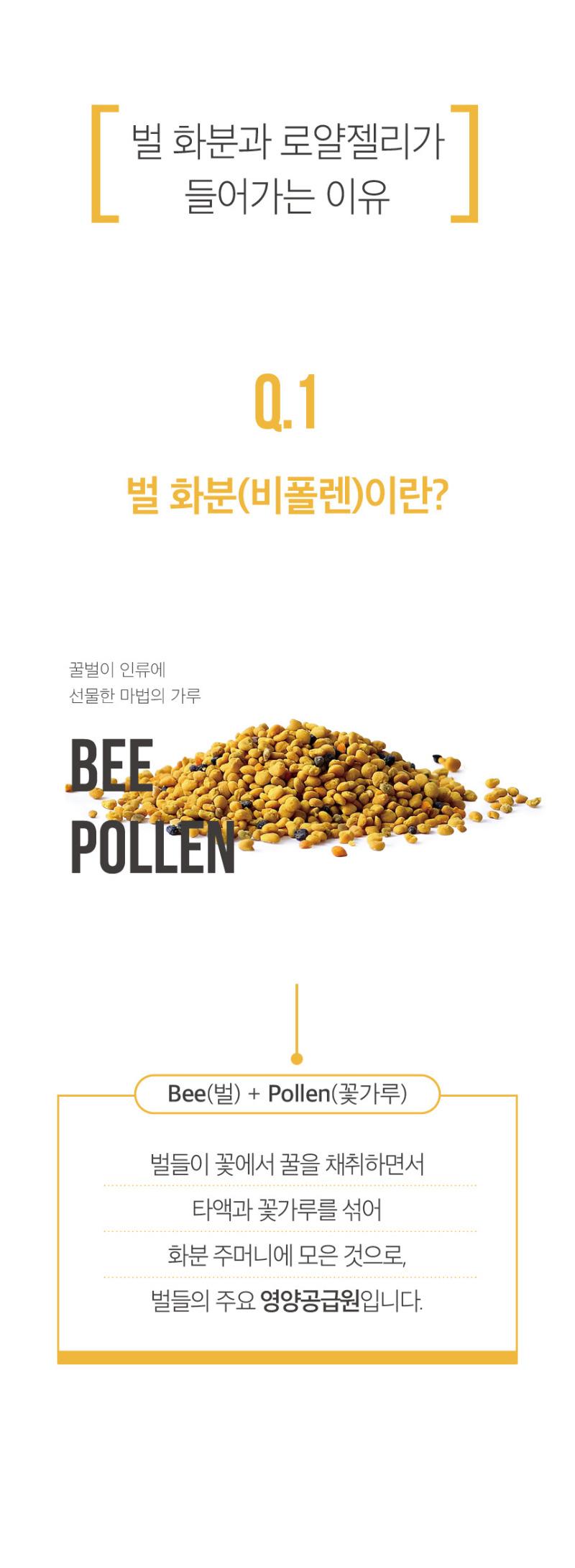 포인트01_벌화분